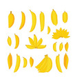 delicious hand drawn food yellow bananas set vector image