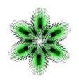 fir star green vector image vector image