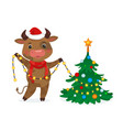 happy new year cute cow decorating vector image vector image