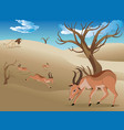 landscape with antelopes vector image vector image