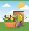 potted flowers shovel and fertilizer garden sun vector image