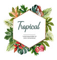 wreath design with tropical leaves frame vector image vector image