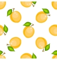 Yellow apricot fruit seamless pattern vector image