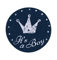 Its a boy label Baby announcement card vector image