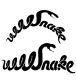 calligraphy style word snake concept logo vector image