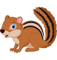 cartoon chipmunk isolated on white background vector image vector image