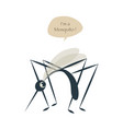 cute mosquito isolated on white background and vector image vector image