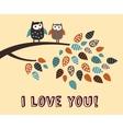 i love you owl bird card vector image