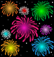 Colorful Fireworks over the Night vector image vector image