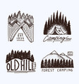 coniferous forest mountains and wooden logo vector image vector image