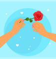 hands holding a rose vector image vector image