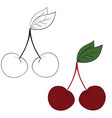 set cherries drawn in black lines and painted vector image vector image
