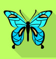 sky blue butterfly icon flat style vector image vector image