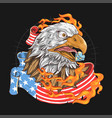 usa eagle fire flag vector image