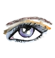 Watercolor hand drawn eye Make up vector image