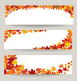 fall leaves banner set swirl autumn leaf vector image
