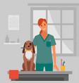 dog brushing in salon vector image