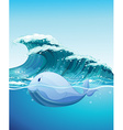 Dolphine swimming under the sea vector image vector image