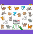 find two identical kitten pictures game for kids vector image vector image