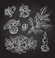 hand drawn decorations vector image vector image
