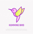 hummingbird thin line icon vector image