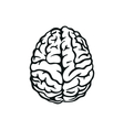 outline of human brain vector image