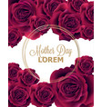 red roses card delicate summer card vector image vector image