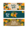 set three autumn sale banner with leaves vector image