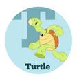 abc cartoon turtle2 vector image vector image