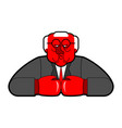 angry boss in boxing gloves red honcho ferocious vector image vector image