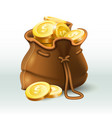 golden coins bag gold coin in old antique sack vector image vector image