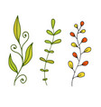leaves and branches decoration cute nature design vector image