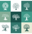 olive and oak trees silhouette isolated on color vector image