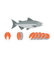 salmon fish and sliced of salmon vector image vector image