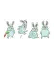 set rabbits vector image
