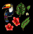 toucan and tropical flowers and leaves embroidery vector image vector image