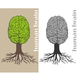 tree formed in cortex of the human brain vector image
