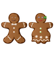 two gingerbread cookies vector image vector image