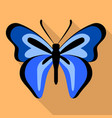 dark blue butterfly icon flat style vector image vector image