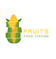 fruits food station cutting corn background vector image