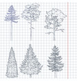 set hand drawn sketch pine trees vector image vector image