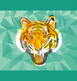 Tiger anger geometric style vector image