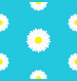 white daisy chamomile marguerite icon seamless vector image vector image