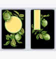banner template with citrus branches of lime vector image