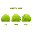 drawing step step a flowering bush vector image