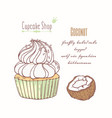 hand drawn cupcake coconut flavor vector image vector image