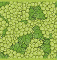 seamless pattern background with green grapes vector image