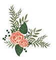 spring flowers with leaves vector image vector image