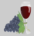 glass of wine and grapes vector image
