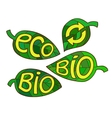 Hand drawn set of Eco labels Ecology Inscriptions vector image